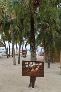 Mambo-No Lifeguard on Duty